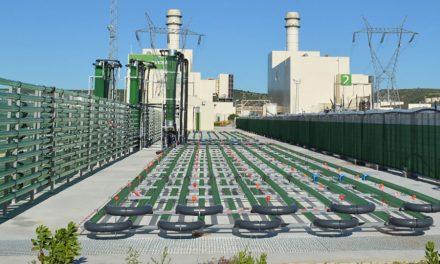 AlgaEnergy e Laboratoire M2 assinam parceria estratégica global
