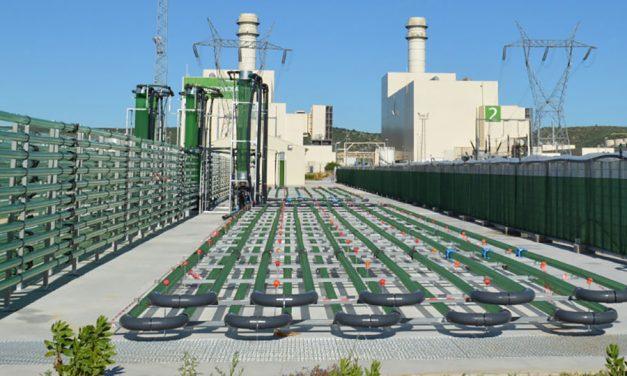AlgaEnergy and Laboratoire M2 Sign Global Strategic Partnership