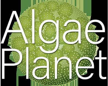 algaeplanet.com