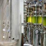 New Bioreactors to Boost Microalgae Production for Biofuels
