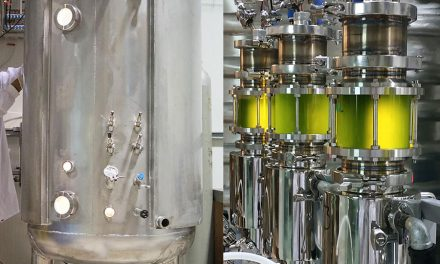 New Bioreactors to Boost Microalgae Production for Biofuels