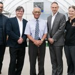 New Zealand Aquaculture Facility Looks to Seaweed's Potential