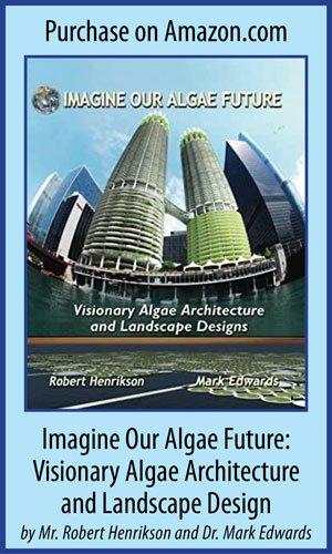 Imagina nuestro futuro de algas