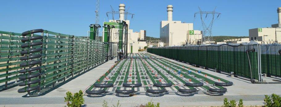 AlgaEnergy's plant in Cadiz, Spain