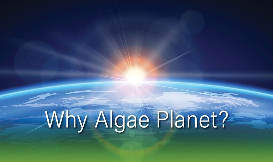 Why Algae Planet?