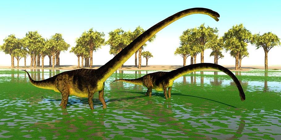 Omeisaurus dinosaurs eat algae