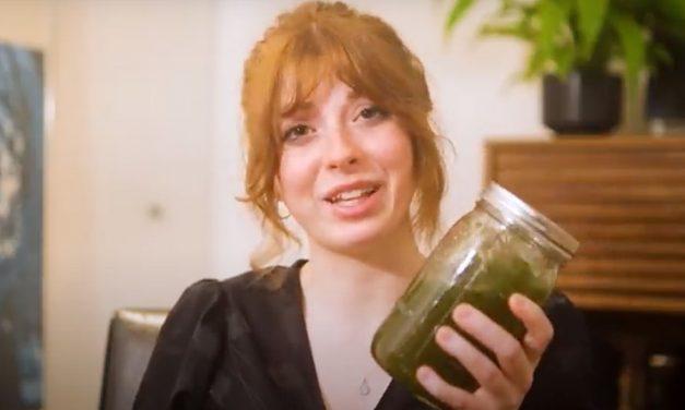 On Starting an Algae Business