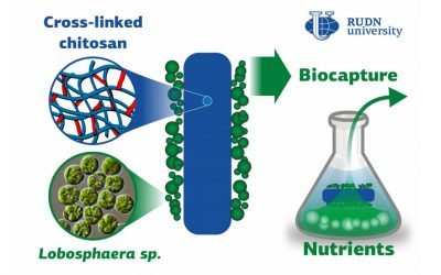 A Step Forward in Biocapture from Wastewater