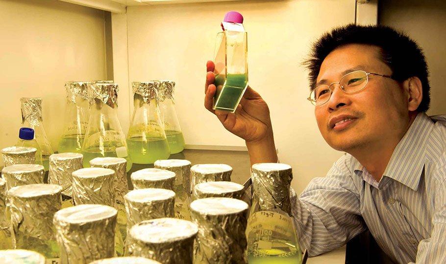 Zhang marine bioproducts