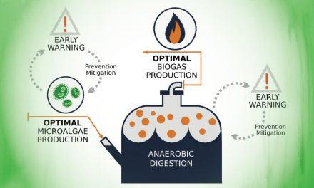 ICM Launches PRODIGIO Project to Boost Microalgae Biogas