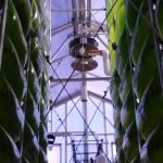 AlgaeCell Licenses University of Arizona Algae PBR