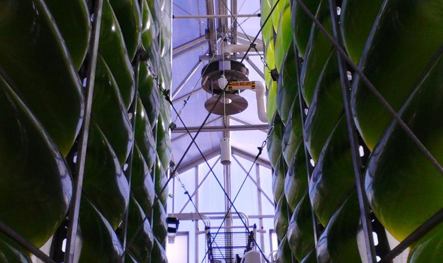 air accordion bioreactor
