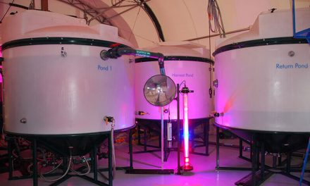 Pond Enters XPRIZE $100M CO2 Removal Competition