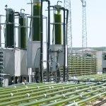 AlgaEnergy de España adquiere dos nuevos socios