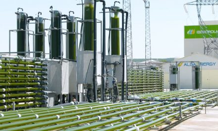 Spain's AlgaEnergy Takes on Two New Partners