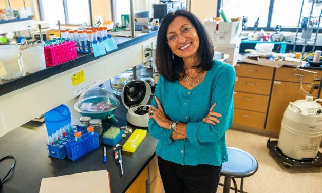 Becario Fulbright de NMSU para investigar las algas para la salud del cerebro