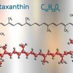 Pressure BioSciences bringt neue UST-Plattform für Astaxanthin auf den Markt