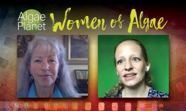 Mulheres de Algas, entrevista com a Dra. Rebecca White