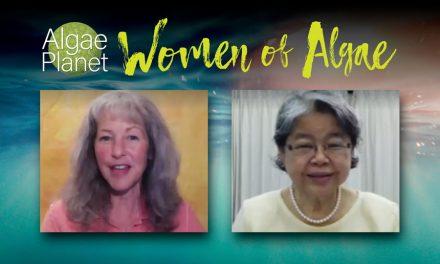 Women of Algae, Interview with Jiamjit Boonsom of Boonsom Farm Spirulina